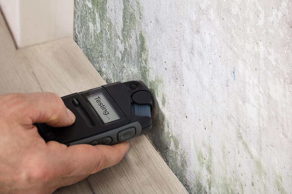moisture meter being used to test mold on a wall while preforming home inspection services